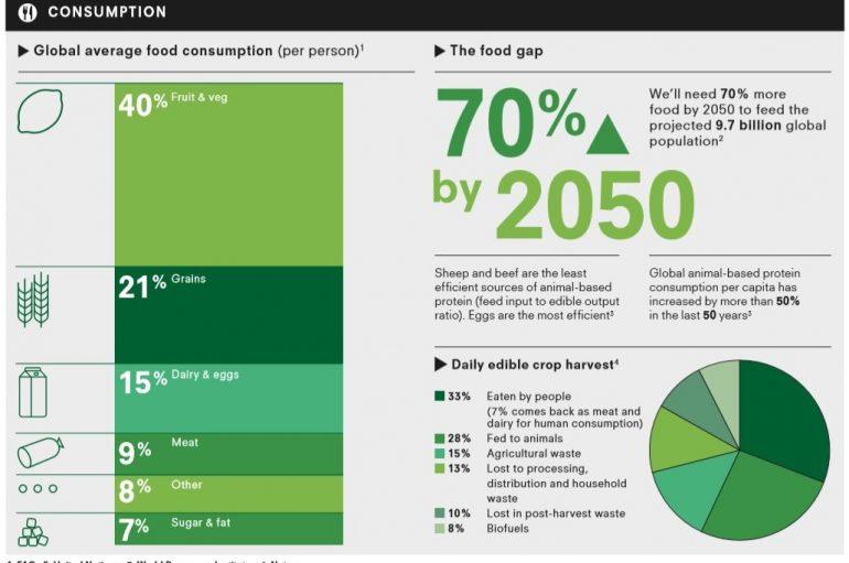 Dieta e qëndrueshme, si të ushqehemi për të mbrojtur planetin