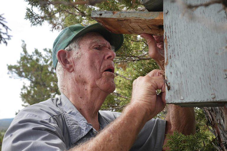 96-vjeçari që shpëton zogjtë blu, ndërton mbi 300 fole në të gjithë shtetin