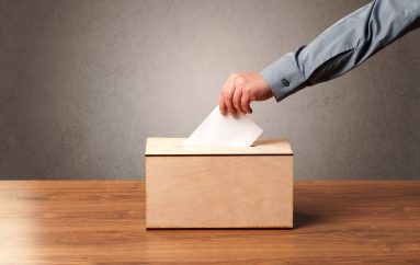 Vota e Verbër