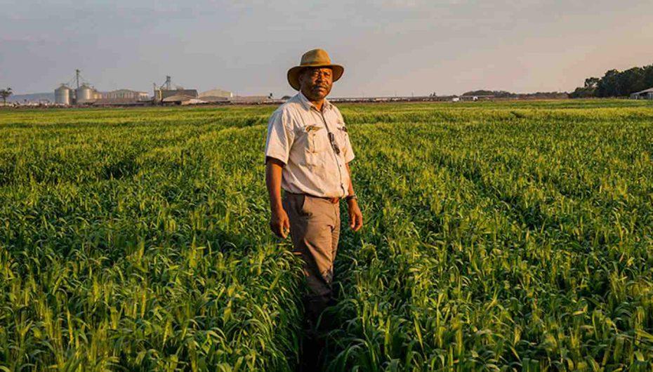 Banka Botërore dhuron 22 miliardë dollarë për ndryshimet klimatike