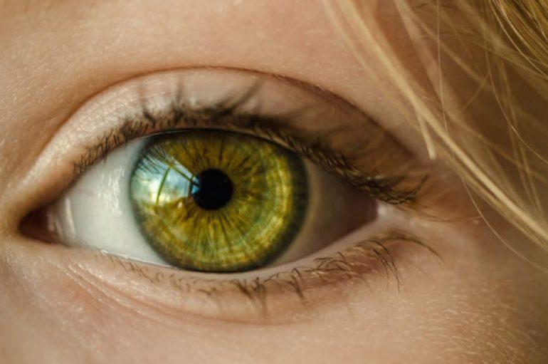 Studimi: Të verbrit rikthejnë shikimin falë dhuruesëve të vdekur