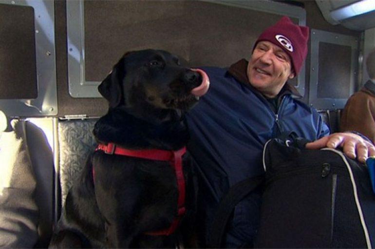 Qeni udhëton me autobus i vetmuar çdo ditë, për të shkuar në park