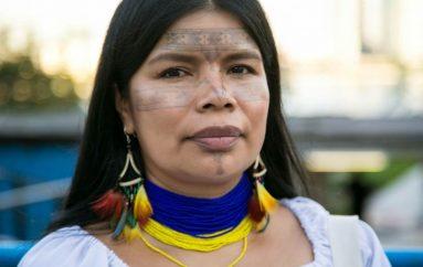 Gratë që po rrezikojnë jetën e tyre për të shpëtuar pyllin më të madh në botë
