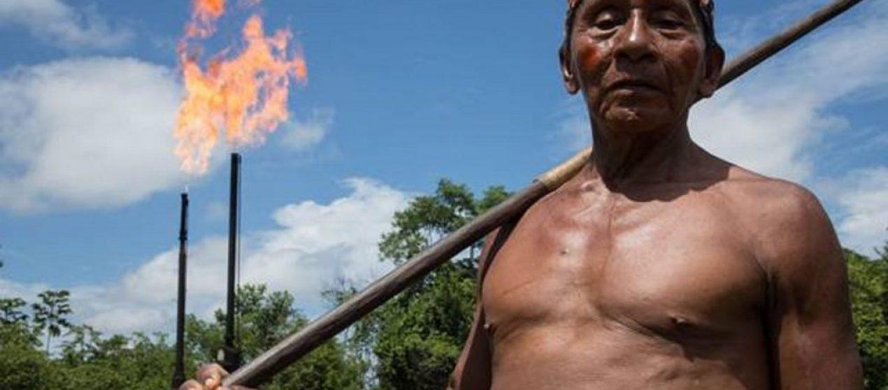 Një raport shqetësues zbulon se sa aktivistë vriten çdo javë për mbrojtjen e planetit