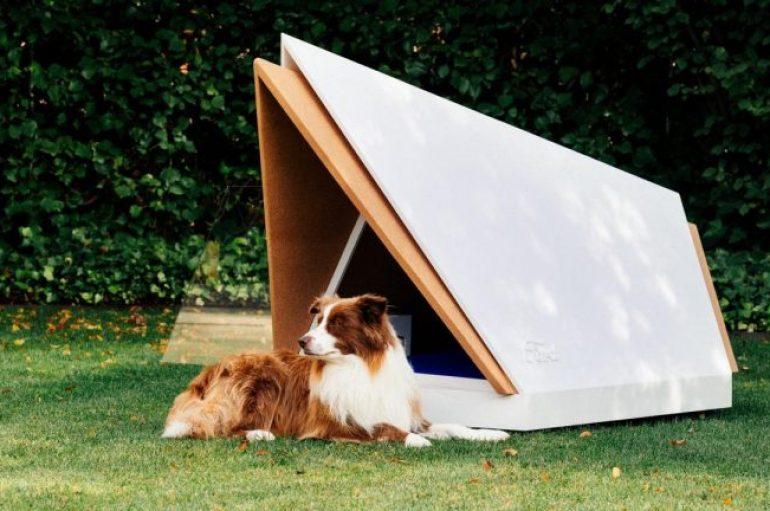 Ford ndërton një shtëpi qenushësh që zhduk zhurmën për këlyshët në ankth