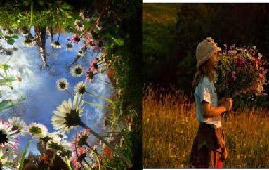 Guida e aventurierit për të mësuar dashurinë, studimet inspiruese