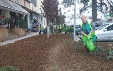 Ndërtimi i lulishteve mes pallateve në Tiranë u shton jetën qytetarëve