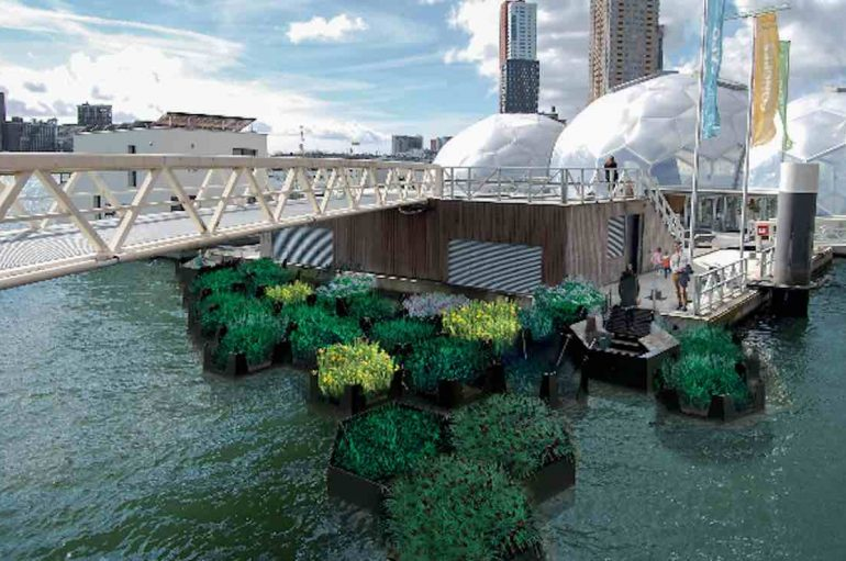 Mbeturinat e lumenjve mblidhen dhe riciklohen për të bërë parqe publike të mrekullueshme