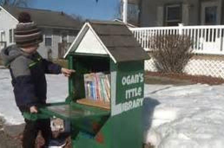 5-vjeçari ndërton bibliotekën e parë në fshat