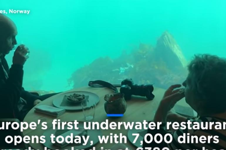 Hapet restoranti i parë nënujor, në mes të peshqve
