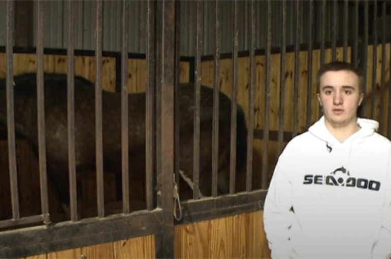 Adoleshenti shpëton 14 kuaj nga flakët