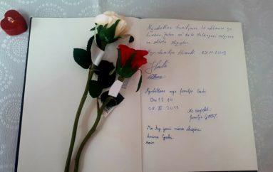 ''Me ty jemi, nëna Shqipëri'
